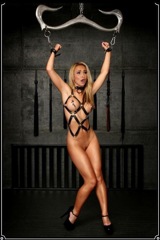 Celebrity Nude Hayden Panettiere