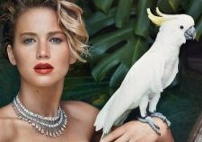 Jennifer Lawrence Poses Completely Nude Boobs Images