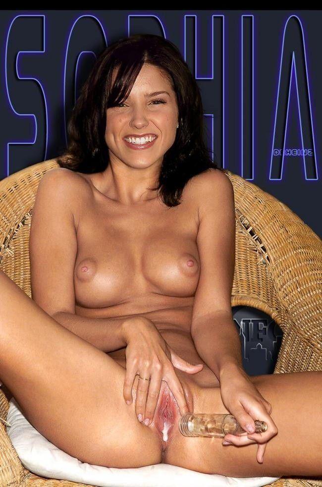 Nude Celeb Sophia Bush