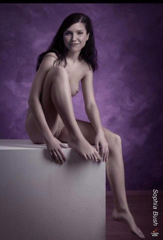 Sophia Bush Porn Pics
