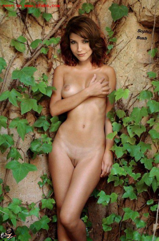 Naked Sophia Bush Nude